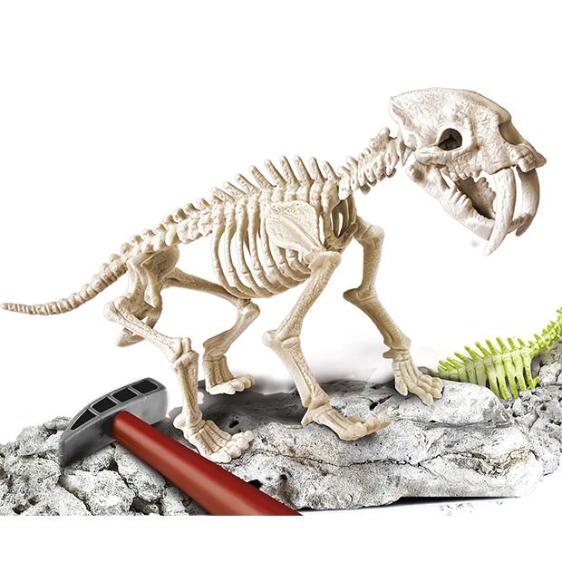 Smilodon, aprende jugando. Excava como un autentico arqueólogo y descubre y monta tu propio fósil de Dientes de Sable.