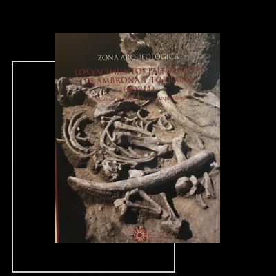 Zona arqueológica nº 5, Los yacimientos paleolíticos de Ambrona y Torralba (Soria)