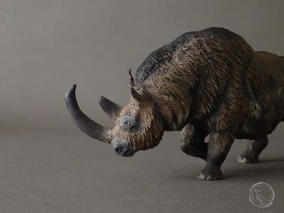 Rinoceronte lanudo IV