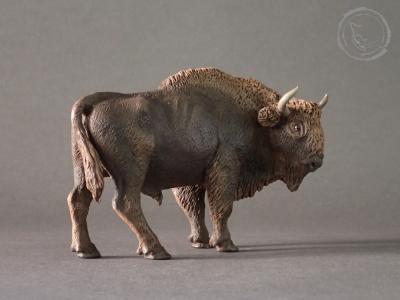 Bisonte europeo I