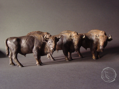 Bisonte europeo VIII