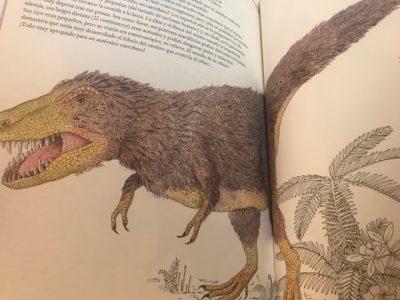 Inventario ilustrado de dinosaurios. Un inventario lleno de novedades para sorprenderse, maravillarse y redescubrir a los dinosaurios.