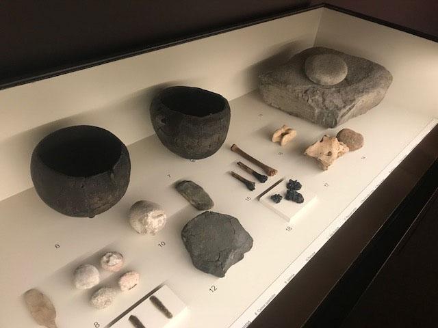Video de la exposición 'La revolución neolítica. La Draga, el poblado de los prodigios'